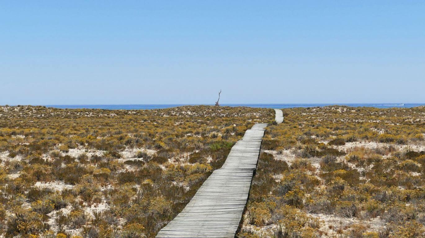 Ilha Deserta walking trail