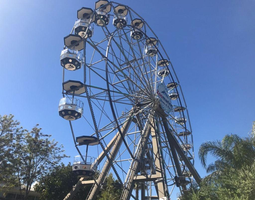 Giant Wheel Zoomarine