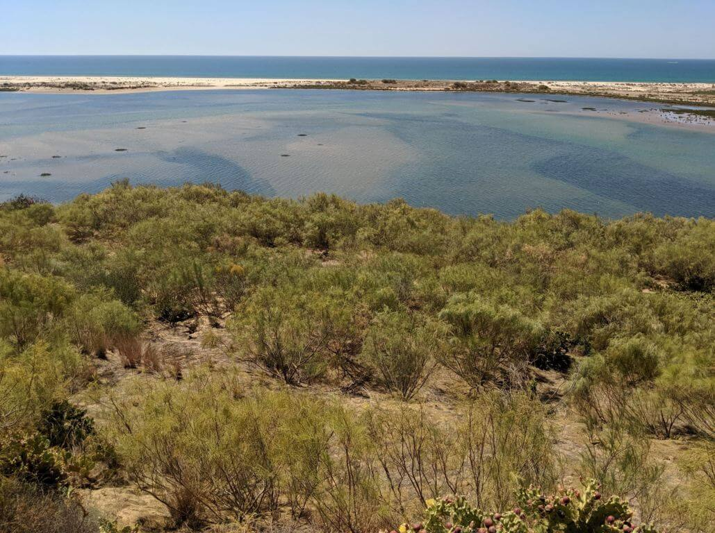 Natural Park of Ria Formosa near Tavira