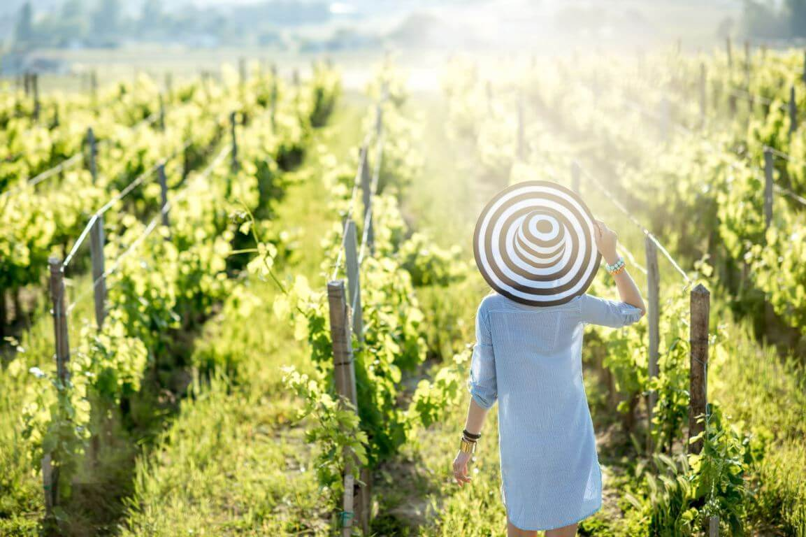 Wine tour in the Algarve - woman in vineyard